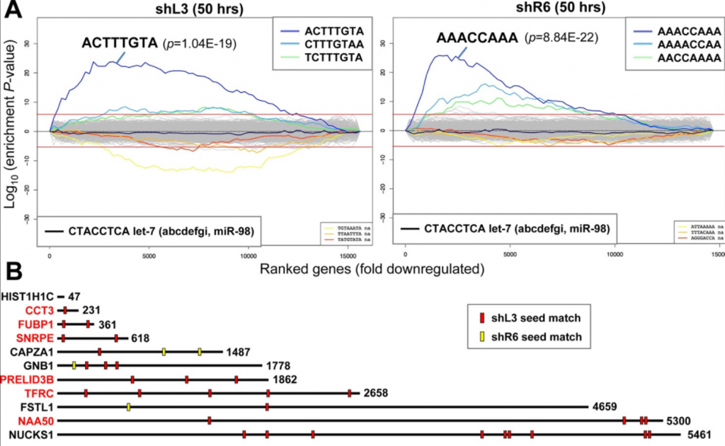 Sylamer plots and seed matches to survival genes showing siRNA off-target effects